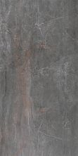 Paramount Tile Fossil PIOMBO MD1066585