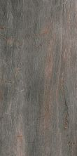 Paramount Tile Fossil PIOMBO MD1066589
