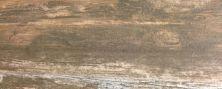 Paramount Tile Boardwalk VENICE BEACH AMBER MDMTG0624004