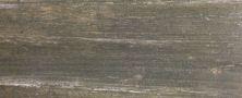Paramount Tile Boardwalk ATLANTIC CITY ASH MDMTG0848001N