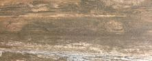 Paramount Tile Boardwalk VENICE BEACH AMBER MDMTG0848004N