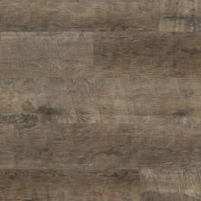 Karndean Reclaimed French Oak RKP8109US
