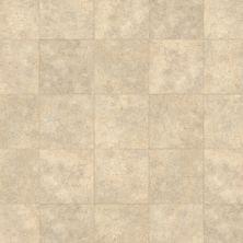 Karndean Knight Tile Soapstone ST5