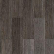 Dolphin Carpet & Tile Guayacan Gris WPGUAGRI8X48