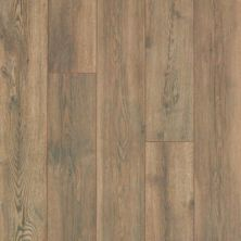 Mohawk Riverleigh Burnished Clay Oak CAD94-05
