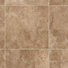 Mohawk Gateway Tile Look Warm Spice F4011-1043