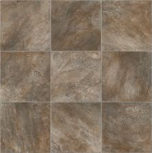 Mohawk Defensecor Tile Look Connasauga Brown C544V-048