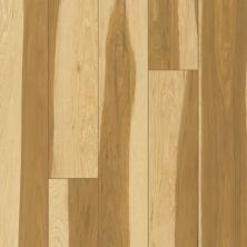 Karastan Luxecraft Refined Forest Harvest KHS01-805