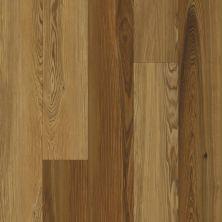 Karastan Refined Forest Cedar KHS01-445