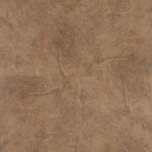 Mohawk Prospects Tile Look Noce C9002-99
