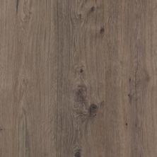 Revwood Celebration – 2 Plank Pearl Platinum Oak CDL11-14