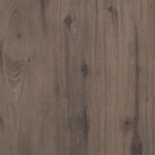 Mohawk Carrolton Hickory Shadow Oak CDL16-9