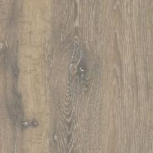 Mohawk Wooded Vision Rustic Brown CAD32-3
