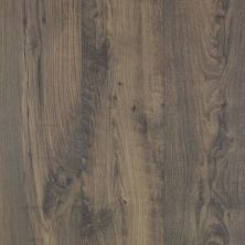 Revwood Select Rustic Legacy Knotted Chestnut CAD74W-03W