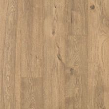 Revwood Plus Elderwood Sandbank Oak CDL80-1