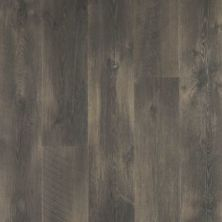 Revwood Plus Crest Haven Wrought Iron Oak CDL81-02