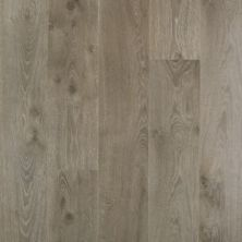 Revwood Plus Southbury Medieval Gray CDL85-02