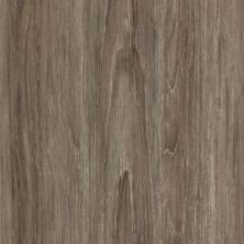 Mohawk Embostic Multi-Strip Coastal Gray FG064-857
