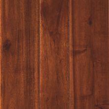 Mohawk Dennison Acacia Spice MSK20-51