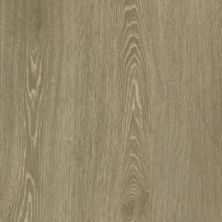 Mohawk Woodlands Multi-Strip Silver Shadow IVO39-893