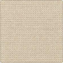 Karastan Gingham Stitch Pale Khaki 41212-29532