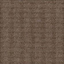 Karastan Berwick Tweed Peat Smoke 41216-29529