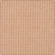 Karastan Bergeron Peach Parfait 41508-29328