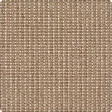 Karastan Bergeron Toasted Sesame 41508-29539