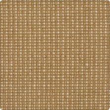Karastan Bergeron Inca Gold 41508-29551