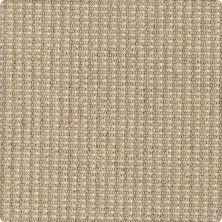 Karastan Woolcheck Classics Heathered Ivory 41563-39851
