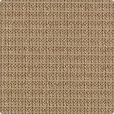 Karastan Wool Crochet New Khaki 41818-29851