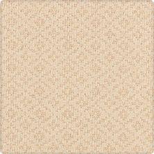 Karastan Weaver's Point Limestone 41842-17846