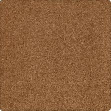 Karastan Maison Golden Brown 43590-9881