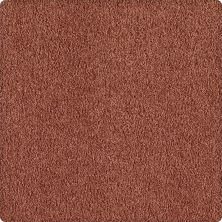 Karastan True Colors Cinnamon Luster 1Y84-9282