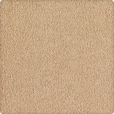Karastan Indescribable Remarkable Beige 43495-9752