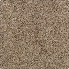Karastan Unprecedented Cobble Path 43503-9756