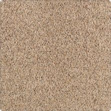 Karastan Unprecedented Coastal Beige 43503-9837
