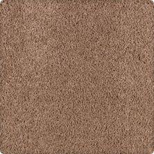 Karastan Simply Spectacular Deerskin 43504-9852