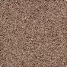 Karastan Simply Brilliant Soft Suede 2A67-9857