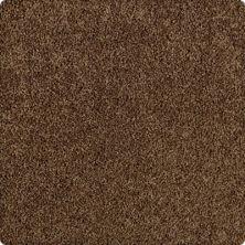 Karastan Simply Spectacular Nutmeg 43504-9886