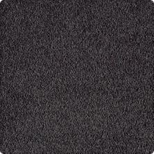 Karastan Simply Brilliant Alden Charcoal 2A67-9989