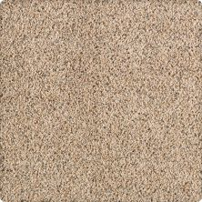 Karastan Remarkable Beauty Coastal Beige 43506-9837