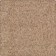 Karastan Sunbrella Roasted Chestnut 2A63-9858
