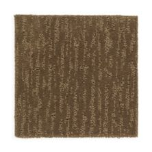 Mohawk Innovative Accents Soft Nutmeg 2E22-501