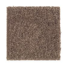 Mohawk True Elegance III Warm Earth 2C13-506