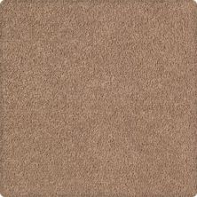 Karastan Infinite Touch Tempting Taupe 43621-9839