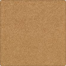 Karastan Tropical Mood Rustic Brass 2E41-9861