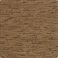 Karastan Vienne Weathered Timber 43588-9852