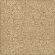 Karastan Elegantly Soft Flaxen 43599-9741