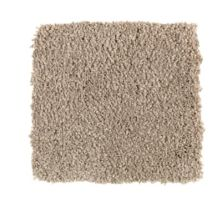 Karastan Elegantly Soft Birch Beige 43599-9832